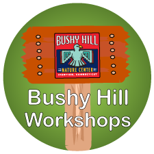 Bushy Hill Workshops